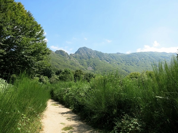 Agudes Montseny Wandern