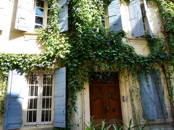Arles blühende Fassade Provence