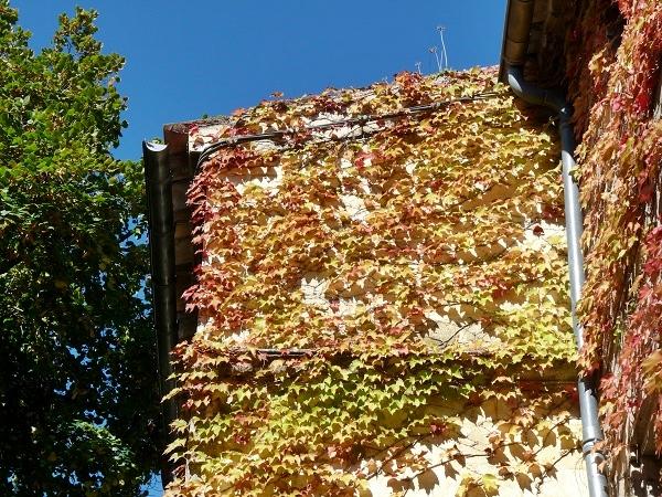 Gordes Provence Dorf