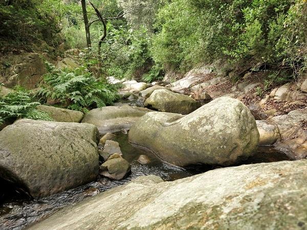 Montseny Naturpark Gorg Negre