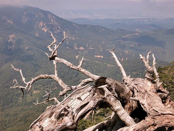 Montseny Wanderwege
