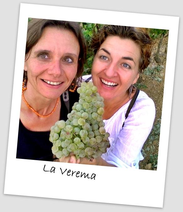 Weinlese La Verema