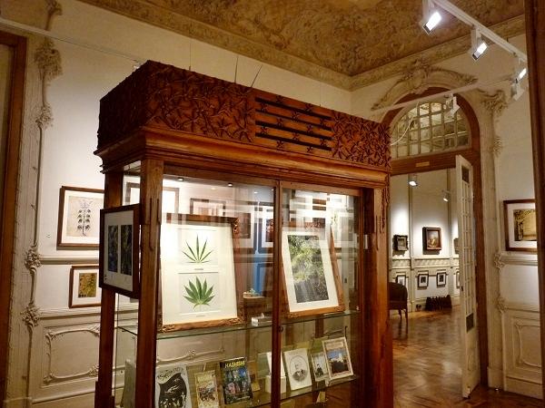 Hanfmuseum Barcelona Ausstellung Cannabis