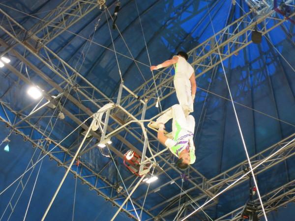 trapez festivaldelcirc zirkus