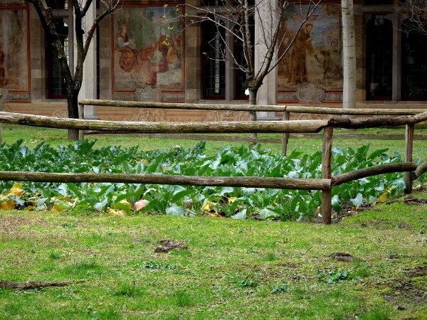 Garten Kloster Kreuzgang Santa chiara Neapel