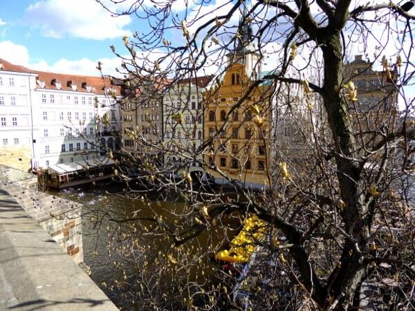 blick von der Karlsbrücke auf Altstadt Prag