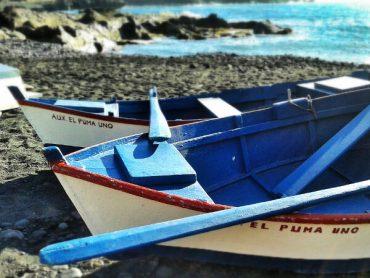 Lanzarote: Wein, Salinas und die Punta Papagayo 1