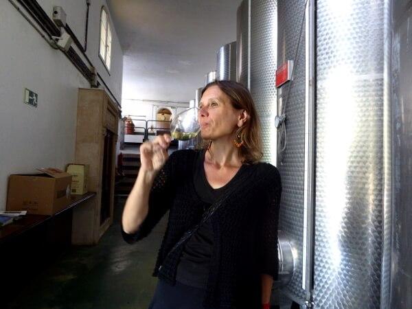 Weinprobe Txakoli