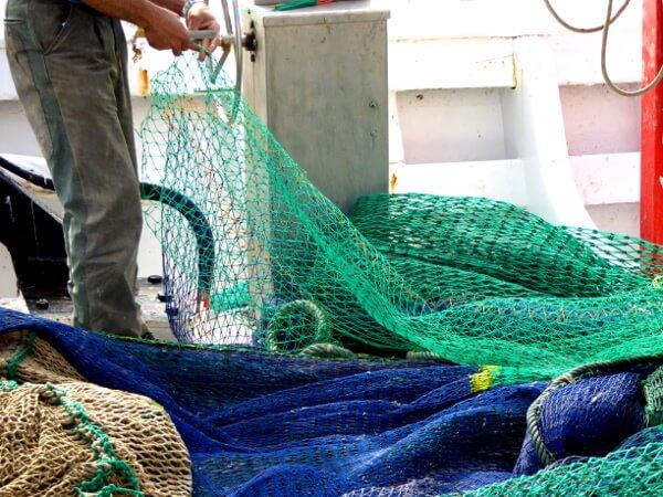 fischer in Palamos