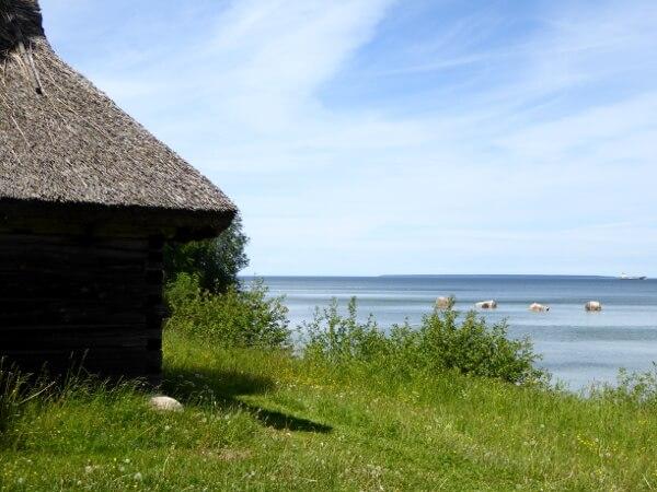 Fischerhütte Freilichtmuseum tallinn