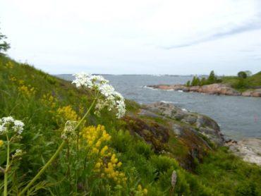 Suomenlinna - mit der Fähre ins grüne Helsinki 5