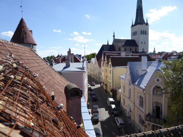 Tallinn tipps Blick vom Dach dicke margarethe