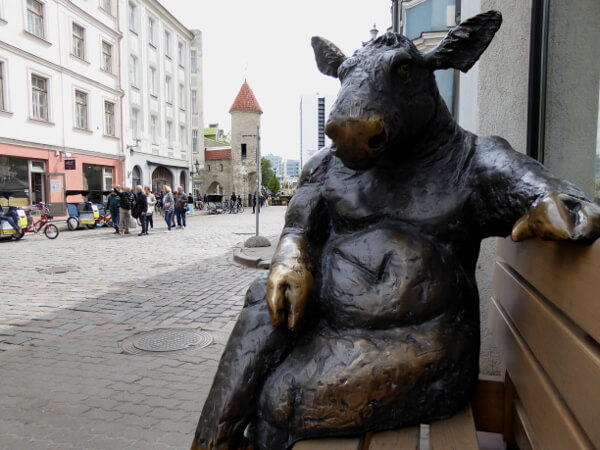 in der altstadt Tallinn