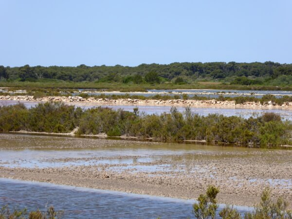 landschaft um die salinas mallorca