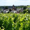 Warum der Sancerre Wein so schmeckt, wie er schmeckt 9