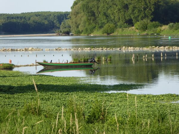 Bouchemaine boot Anjou