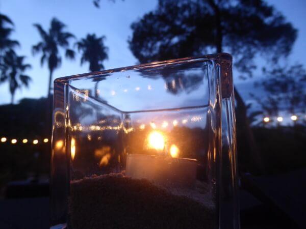 Am Abend nits marimurtra Jardi Botanic