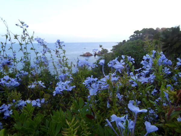 blick vom garten marimurtra auf die costa brava küste