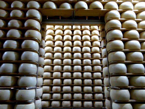 Parmigiano Reggiano. Käse Lager Parmesan