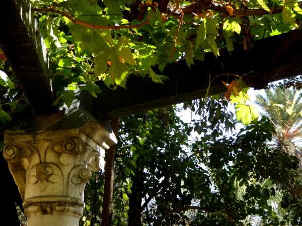 Real Alcazar Sevilla Gärten Laube
