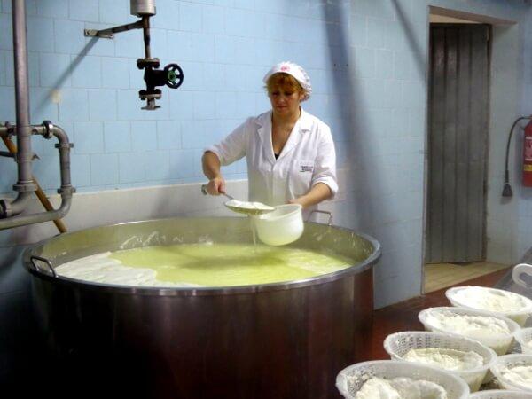Ricotta Herstellung Käserei