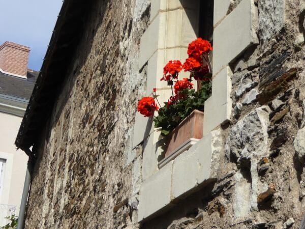 Angers Altstadt Fenster