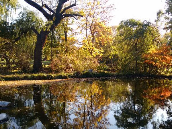 Berlin Park Friedrichshain Volkspark im Herbst