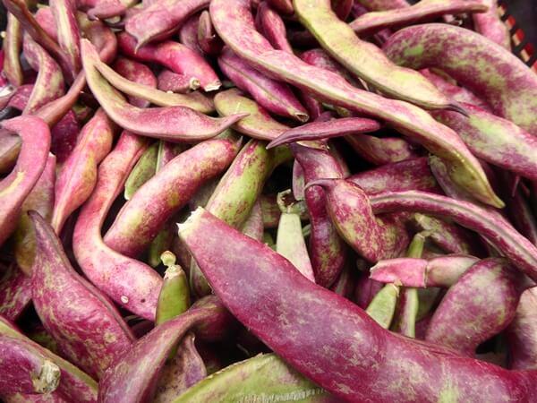 Loule markt Bohnen