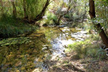 Kreativ in Querença - Wandern zur Fonte Benémola 5