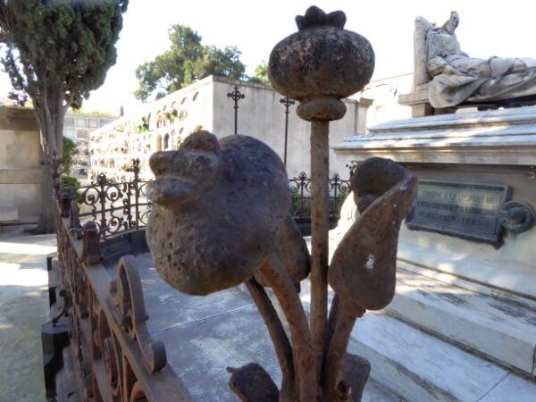 Friedhof poblenou Barcelona Mohn