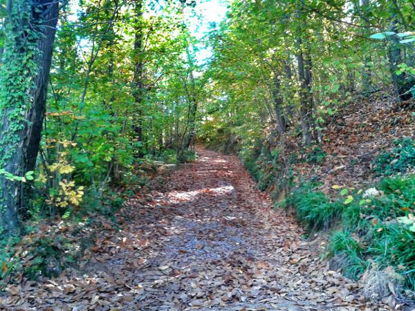 Wanderwege Sant Hilari Sacalm
