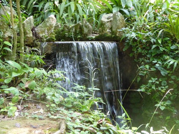 Jardim Botânico Wasserfall