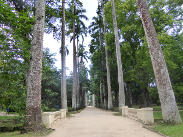 Jardim Botânico Wege