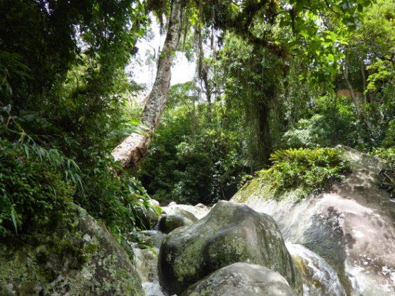 Parque Serra dos Órgãos und der Finger Gottes 22