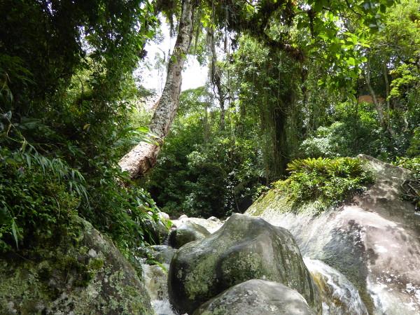 Parque Serra dos Orgaos Teresopolis Naturpark Brasilien