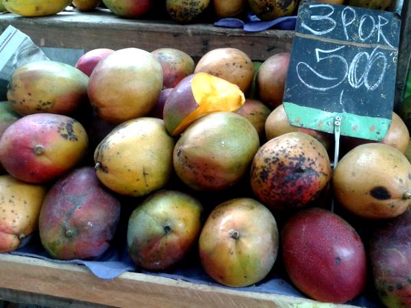 mangos Brasilien