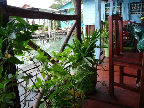 Restaurant Alvin Bastimentos