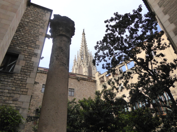 blick Kathedrale Museu frederic mares palau reial barcelona