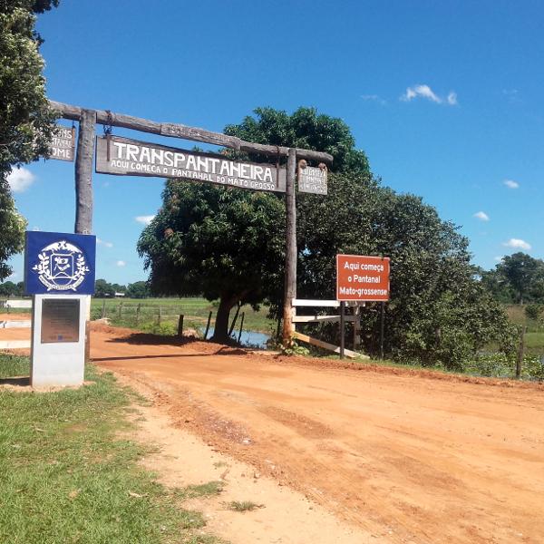 Mato Grosso pantanal