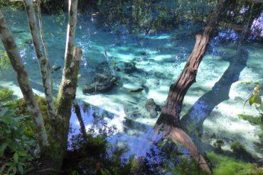 Die Zauberwelt von Bom Jardim 3