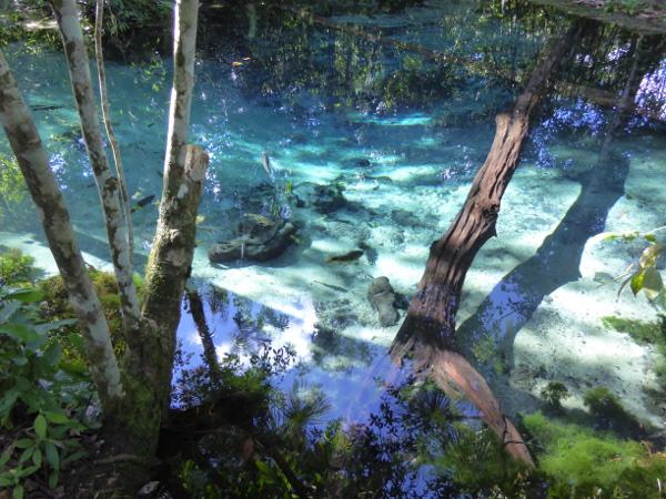 blaue lagune mato grosso bom jardim