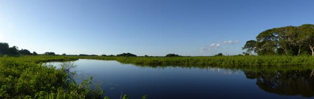 panorama pantanal