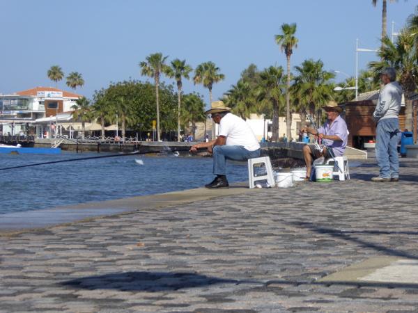 Angler im Hafen von Kato Paphos Zypern