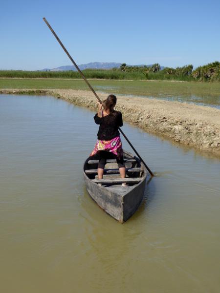 Barca Perchar Reis im Ebrodelta freibeuter reisen
