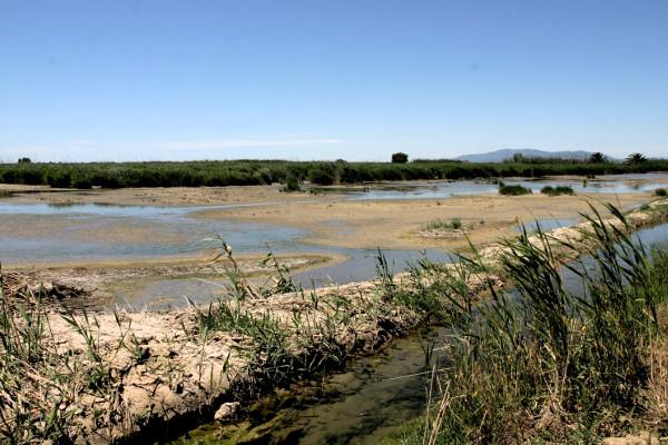 Delta de l'ebre Reis Ebrodelta freibeuter reisen