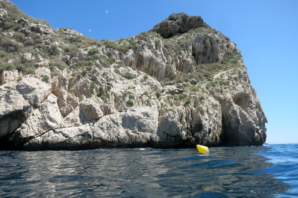 Islas Medas Costa Brava Diving Freibeuter Reisen Tauchspot La Vaca felsen
