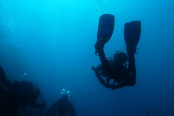 Islas Medas Tauchen costa brava l estartit freibeuter reisen taucher