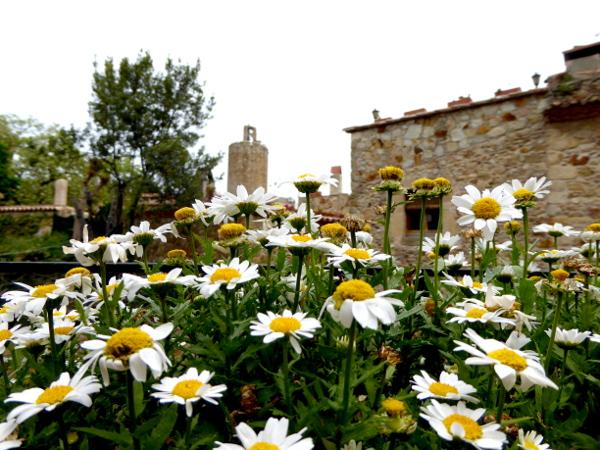 Pals Blumen und Torre de les hores