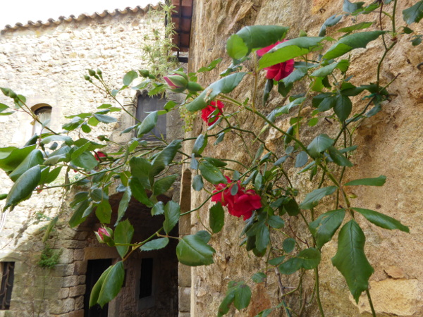 Pals Rosen mittelalterliche Dörfer Costa Brava