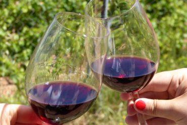 Die guten Weine des Montsant : La Placeta 13